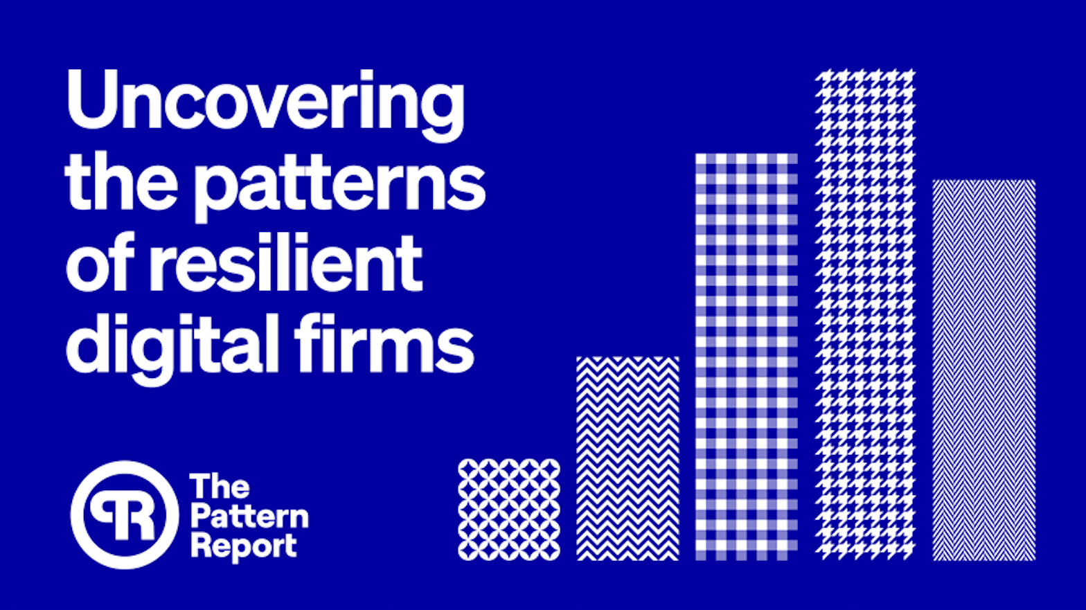 Uncovering the patterns of resilient digital firms